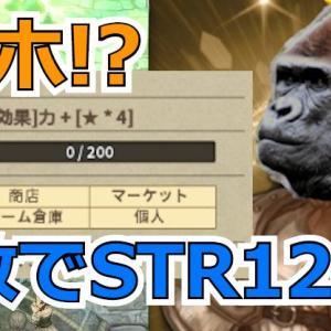 【TOS日記】ラシュアカードがゴリラな件