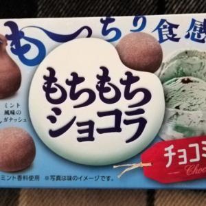 チョコミント系商品をひたすらレビュー(チョコ編②)