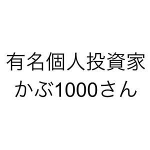 【更新】かぶ1000さん「初心者向け資金30万円の株式投資運用法と費用対効果の極意!」概要