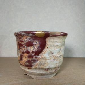 辰砂植木鉢