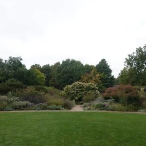 家の近くのガーデン (The garden near our house)