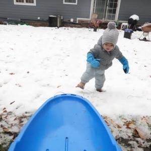 初そり遊び (The first sledding)