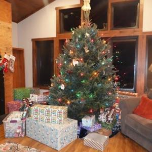 2 我が家のクリスマス・イヴ (2 Our Christmas 2020, Eve)