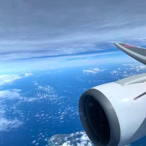 2か月ぶりの飛行機旅