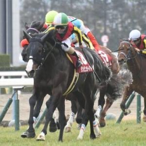 【note】京都記念2020を過去傾向・注目馬・展開から予想