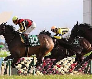 【note】京都牝馬Sを過去傾向・注目馬・展開から予想