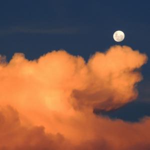 私を月まで連れてって。
