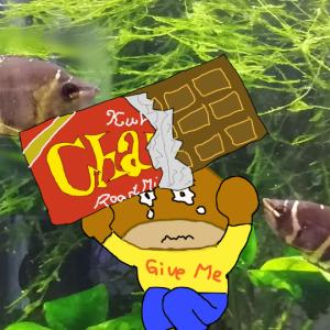 チョコレートグラミーのイジメ対策にチョコレートグラミーを増員