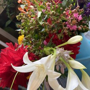 本日のお花‼️