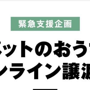 オンライン譲渡会のお知らせとお礼!