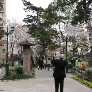 花の道(宝塚市)