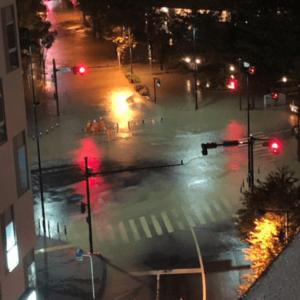 【多摩川氾濫】本当だった。