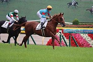 【皐月賞】サリオスは晩成ハーツ産駒の中で規格外の馬か?