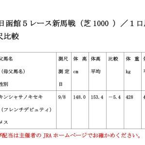 【結果】6月13日(土)の新馬戦/測尺評価