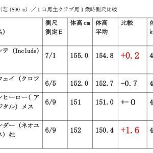 7月11日(土)福島・阪神・函館新馬戦/測尺評価