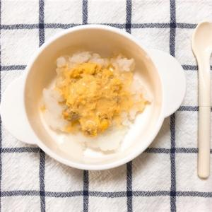 【9ヶ月】離乳食4週目・卵【アレルギー】