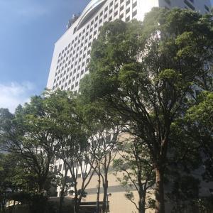 横浜市民なのに知らなかった横浜三塔 と初あかいくつ号