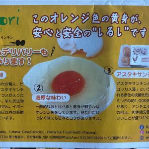 Kenkori で卵デリバリー