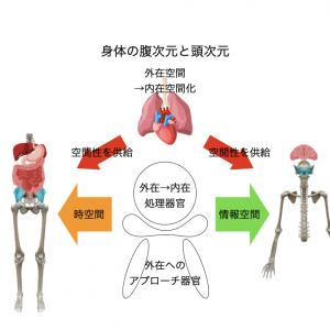 【第二部】腹身体と頭身体を見出したキッカケ 三体思想トライアドローン(テキスト対談)