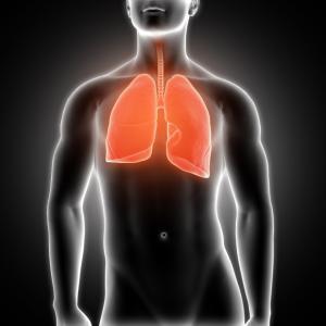 【第二部】肺と心臓 三体思想トライアドローン(テキスト対談)