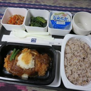 なんちゃって機内食「機内食チャレンジ_105」大戸屋