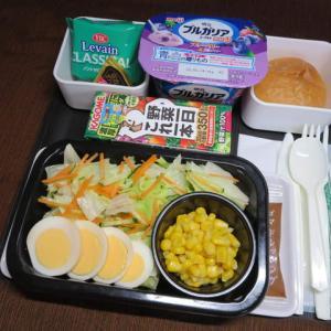 なんちゃって機内食「機内食チャレンジ_118」フレッシュサラダ2
