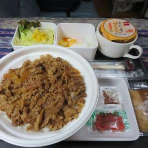 なんちゃって機内食「機内食チャレンジ_121」なか卯2