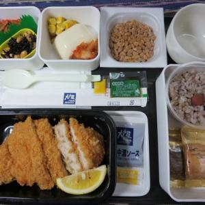 なんちゃって機内食「機内食チャレンジ_151」大戸屋3