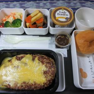 なんちゃって機内食「機内食チャレンジ_155」びっくりドンキー