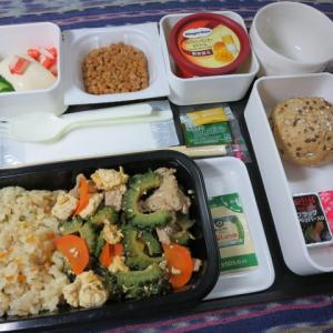 なんちゃって機内食「機内食チャレンジ_166」ゴーヤーチャンプルー