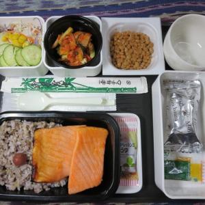 なんちゃって機内食「機内食チャレンジ_205」鮭の西京焼き2