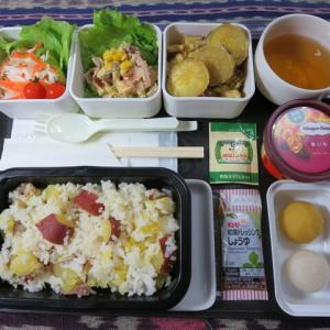 なんちゃって機内食「機内食チャレンジ_228」秋の味覚3