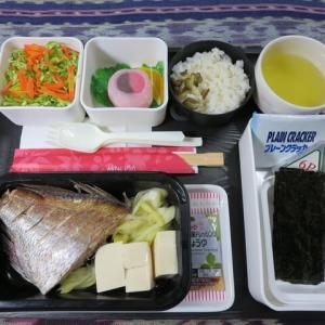 なんちゃって機内食「機内食チャレンジ_258」タイの煮つけ