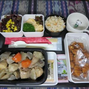 なんちゃって機内食「機内食チャレンジ_306」筑前煮