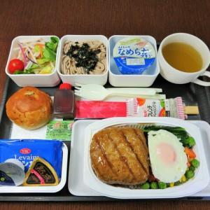 なんちゃって機内食「機内食チャレンジ_452」ハンバーグ3