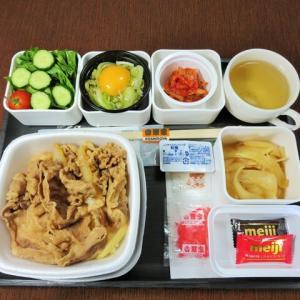 なんちゃって機内食「機内食チャレンジ_453」吉野家9