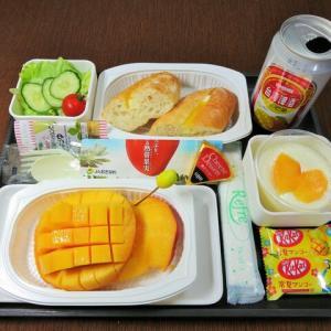 なんちゃって機内食「機内食チャレンジ_454」マンゴー三昧2