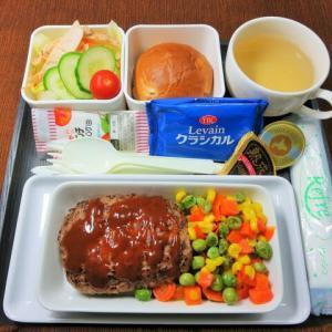 なんちゃって機内食「機内食チャレンジ_461」ハンバーグ4