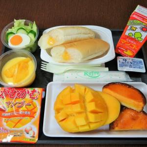 なんちゃって機内食「機内食チャレンジ_465」マンゴー三昧4