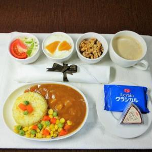 なんちゃって機内食「機内食チャレンジ_530」ビーフカレー2