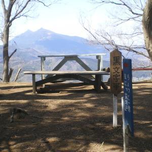 閑居山から引き返して森林公園に戻る 雪入山(後編)