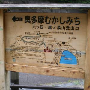 中高年の山歩き 奥多摩むかし道(前編)