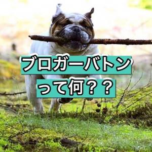【はてなブログ】ブロガーバトンって何?回ってきたので回答してみるよ!