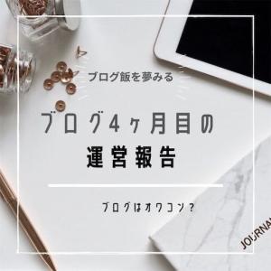 特化ブログ運営4ヶ月目の記事数・PV数・収益は?【はてなブログ】