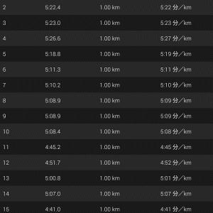 リベンジ15kmビルドアップ