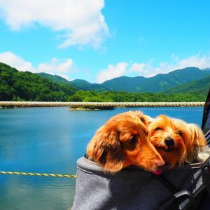 真夏でもひんやり・・笹ヶ峰キャンプ場