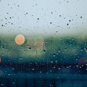 台風でどうしようもないときは。