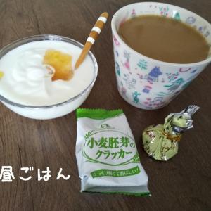 けっこう☆セキララ年間の家計簿見る~?
