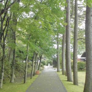 軽井沢まで通行止解除したので出発!