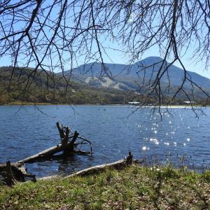 好天に誘われて女神湖へ